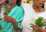 WOMEN CHEWING KHAT PHOTO/COURTESY