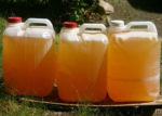 URINE IN CONTAINERS [PHOTO/COURTESY]