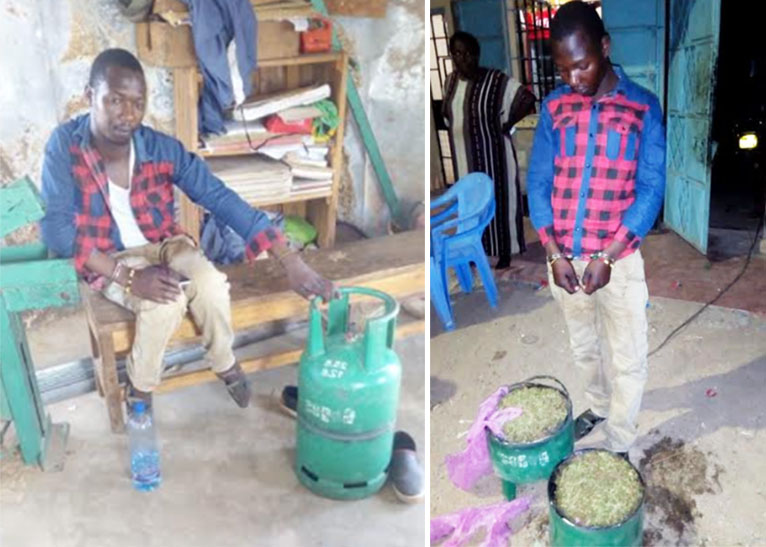 MAN CAUGHT WITH BHANG IN MASARBIT [PHOTO | COURTESY]